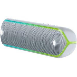 Sony Enceinte Bluetooth SRS-XB32 Gris