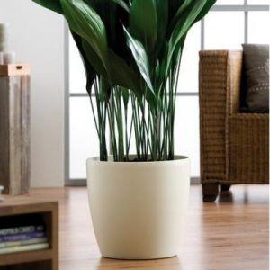 Elho Pot de fleurs - brussels rond mini 9,5cm ivoire - 10.2 x 10.2 x 8.7 cm