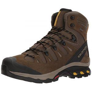 Salomon Quest 4d 3 GTX, Chaussures de Randonnée Hautes Homme, Gris (Wren/Bungee Cord/Green Sulphur 000), 44 EU