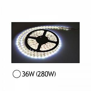 Vision-El BANDE LED Blanc 6400°K IP65 5 M 30 LEDS et 7 2 W / M IP20 MIIDEX 75041