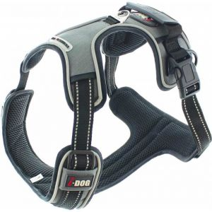 I-Dog I DOG Harnais Style - Taille M - Gris - Pour chien