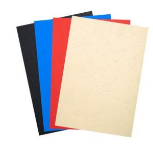 Exacompta 2789C - Paquet de 100 plats FOREVER, carte 270 g/m², grain cuir, coloris assortis