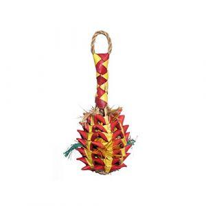 Rosewood Woven Wonders Surprises Labyrinthiques Ananas à Farfouiller Jouet pour Oiseau Taille S/M/L