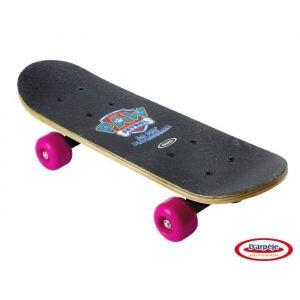 D'arpeje Outdoor Mini skate Erable Skye Pat'Patrouille (43 cm)