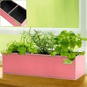 Deuba Pot de fleurs 6 L - Bac à fleurs avec 3 cases - Plantation Jardin Balcon Rose