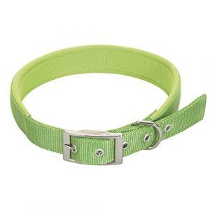 Chapuis sellerie Collier pour Chien Sangle Confort Nylon Vert Largeur 20 mm, Longueur 45 cm , Taille M