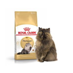 Royal Canin Feline Breed Nutrition 30 - Croquettes pour chat adulte Persan 4 kg