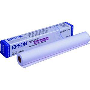 Epson C13S041102 - Rouleau de papier couché qualité photo (42 cm x 15 m)