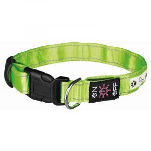 Trixie Collier flash lumineux usb - M-L: 40-50 cm/25 mm, vert