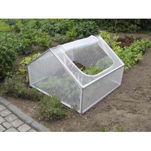 Nature World Serre de jardin en PVC (100 x 100 x 68 cm) 1 m²