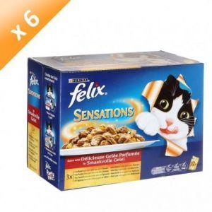 Purina Felix Sensations - Sachets fraîcheur pour chat : boeuf, poulet, canard, agneau (6 x 12 x 100g)