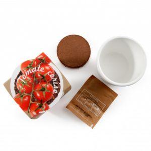 Radis et capucine Pot céramique blanc 8 cm Tomate cerise