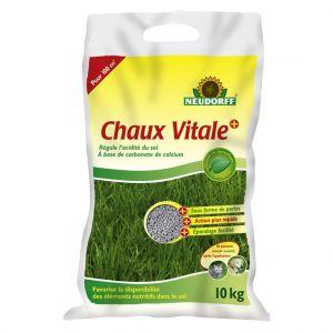 Neudorff Chaux vitale Azet 10 kg