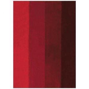Spirella Tapis de bain FOUR 55x65cm Rouge Tapis de bain FOUR - 60x90cm - Polyester et acrylique - Hauteur de fibre de 20 et 25 mm - Bleu