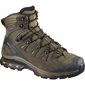 Salomon Quest 4d 3 GTX, Chaussures de Randonnée Hautes Homme, Gris (Wren/Bungee Cord/Green Sulphur 000), 42 EU