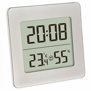 TFA Dostmann Dostmann 30,5038,54 -Thermomètre/hygromètre numérique Couleur : Argent