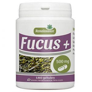 Fucus + 500mg - 180 gélules (Fucus - Lithothamne - Spiruline) (123PLANTES, neuf)