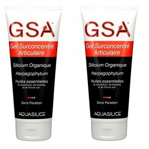 Gsa Gel Surconcentré Articulaire Silicium Organique 200 Ml Lot De 2 (Beauty Care Store, neuf)