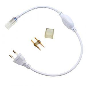Greensun Bloc d'alimentation transformateur adaptateur secteur pour bande LED 5050Barre Guirlande lumineuse Tuyau flexible lumineux à LED 220–240V Accessoires pour tuyau lumineux Prise européenne (Homelight2008, neuf)
