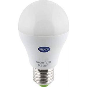Ampoule LED E27 avec détecteur de mouvement HF 360° + capteur crépusculaire - 7 W 600 lm - Blanc jour (4000 K) (HAVA GmbH, neuf)