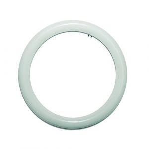 LightED Tube LED circulaire 2G10, 20 W, Blanc, 300 mm (Prendeluz, neuf)