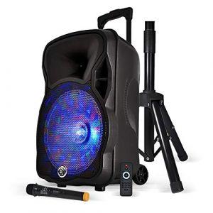 "Enceinte sono karaoke batterie 12"" 600W effet Friztal + Micro sans-fil + Pied - MyDJ MAGIK (100MAXI, neuf)"