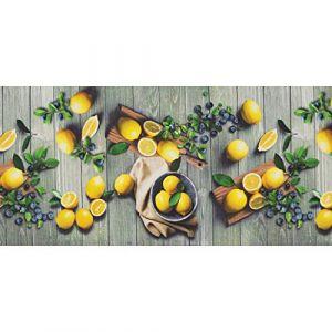 WohnDirect Tapis d'intérieur Fonctionnel jusqu'à 10 m de Long - Tapis de Cuisine résistant, antidérapant et Facile à Nettoyer - Tapis de Bain - Tapis de Passage - Lemon - 50x200cm (WohnDirect, neuf)