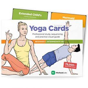 WorkoutLabs Cartes de Yoga en Plastique avec langage Sanscrit pour études visuelles, séquence de Cours, Exercices avec Postures, Exercices de Respiration et méditation (Jeu Complet) (WorkoutLabs EU, neuf)