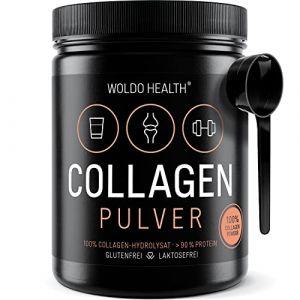 Collagène poudre de bœuf Protéine Gelatine - 500g Collagen Hydrolysat Peptides Type I et type II Complement Alimentaire (Woldo Group, neuf)