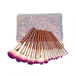 DDFHK Makeup brush 17 trousse de maquillage en acajou de haute qualité, pinceau, sac de peinture argentée (runkaijz, neuf)