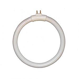 Ampoule G10Q 12W Tube Circulaire / Lumière du Jour (Andes Express, neuf)