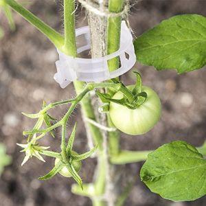 G2PLUS 100pcs Jardin plantes Clips Fleur Clip Idéal pour sécuriser les plantes au Plante Prend en chargeÂ–Blanc (BIGGER, neuf)