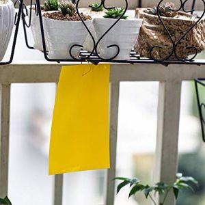 10 pcs jaune mouche piège double face, 15 * 20cm autocollants en papier collant contre les aleurodes, pucerons, moucherons et mineuses des feuilles (JH Gardening, neuf)