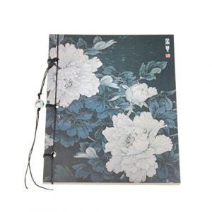 Carnet de Croquis Papier à Dessin Style Chinoiserie 80 Papiers Kraft Cahier Blanc Protection d'oeil - 3# (JiahongUK, neuf)