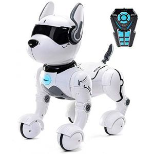 Jouet robot télécommandé pour chien, Robots pour enfants, Rc Toys Robot pour enfants 2,3,4,5 ans et plus, Robot et jouet dansant, Imiter des animaux, Mini animal - Chien ne parle que l'anglais (Hobbit Village, neuf)