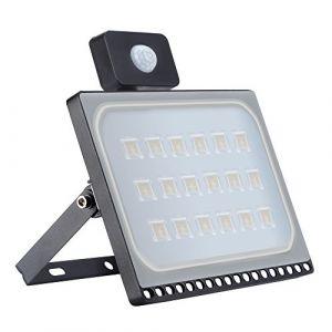 Projecteur led exterieur detecteur de mouvement, 100W Projecteur led, 10000LM, étanche IP65, idéal pour éclairage public, garage, couloir, jardin, etc. (Blanc chaud) (papasbox, neuf)