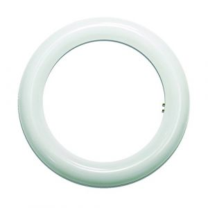 LightED Tube LED circulaire 2G10 Blanc 15 W 215 mm (Prendeluz, neuf)