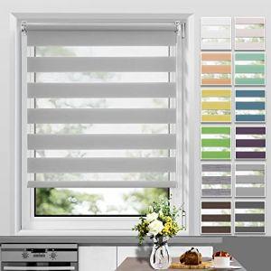 Allesin Store Enrouleur Jour Nuit sans Perçage 110 x 210 cm Gris, Facile à Installer avec Clips pour Fenêtre ou Porte (TenArea, neuf)