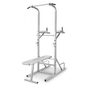 Capital Sports Spiris - Rack à Squat Multifonction avec Banc Repliable et Supports pour haltères : Chaise Romaine, tractions, dips, Pompes, développé-couchés - Gris (Electronic-Star-FR, neuf)