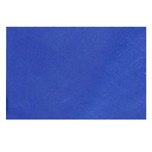 TRIWONDER Imperméable à l'eau Hamac Tente De Mouche De Tente Tarp Empreinte Camping Abris Tapis De Sol Parasol Tapis pour Randonnée Extérieure Plage Pique-Nique (Bleu Foncé, L - 118 x 118in) (Triwonder (FR), neuf)