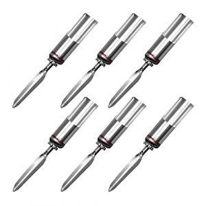 AUHOTA 6Pcs Universel Support au Sol Porte Canne à Pêche en Acier Inoxydable, Canne à pêche Stand Repose Montage Vertical Poinçonnage Piquet à Terre - Détachable &Portable (AUHOTA, neuf)