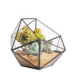 Terrarium moderne en forme de demi-sphère triangulaire en verre fait à la main - Forme géométrique - Pot de fleurs pour rebord de fenêtre - Pour bonsaï, table basse - Décoration pour plantes grasses (Shenzhen Zhongpengcheng Intelligent Technology Company,