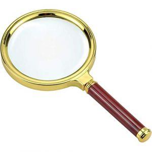 Loupe Lecture 10x LoveSelfy  Loupe Grossissante Loupe Bijoutier Loupe Enfant Loupe de Poche Loupe Horloger Loupe Botaniste Loupe Frontale Lunette Loupe Eclairante  Magnifying Glass x10 (Sonali, neuf)