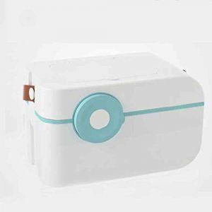 Boîte de rangement pour médicaments ménagers, petite boîte à médicaments pour enfants, boîte à médicaments pour voiture, boîte de rangement portable à couches superposées, boîte de premie (GQP Boutiques, neuf)