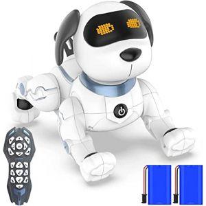 okk Chien Robot Intelligent, 2020 Nouvellement Télécommande Chien avec Chanter, Danser, Parler, Jouets éducatifs Précoces Intelligents pour 3-12 Ans Garçons Filles Cadeau de Noël d'anniversaire (anysonic, neuf)