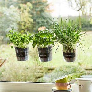 Trio de plantes aromatiques «Basilic» pour fenêtre de cuisineÉtiquette et craie - Fresh Herbs Trio - Jardin - Herbes Jardin - Décoration de fenêtre - Cadeau - Ø 13cm - Hauteur?: 16cm. (cuadros-lifestyle, neuf)