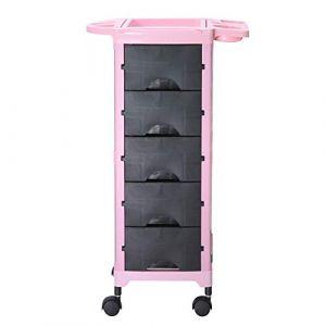 6 Niveaux Salon Chariot de stockage Chariot de coiffure Multifonction Coiffeur Boutique Bac à colorier Roulant Tiroirs Beauté Massage Spa Tatouage Meubles avec Porte-sèche-cheveux,Pink + black (World--Trade--Buy, neuf)