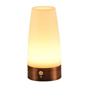 Signstek LED Lumière sans Fil, Lampe de Réveil,Détecteur de Mouvement PIR, Lampe de table (Culot Métal) (EU shopping Store, neuf)