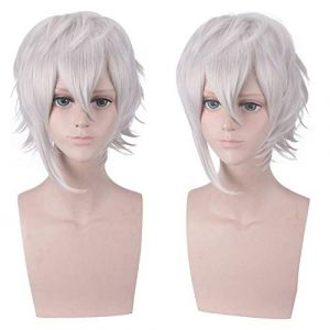 Cosplay perruque argent blanc cheveux courts cheveux queue anti-warp perruque perruque anime (petrichor87, neuf)