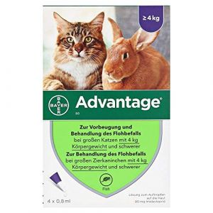 Bayer Advantage Cat (Farmer outlet, neuf)